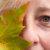 Die Bedeutung der Augenfarbe grün