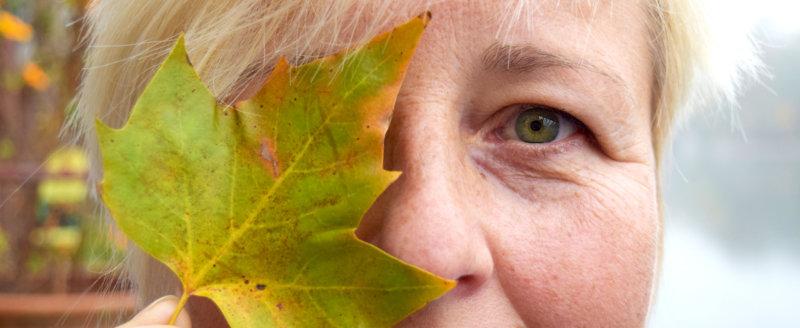 Die Bedeutung Der Augenfarbe Grün Veronesi Optik